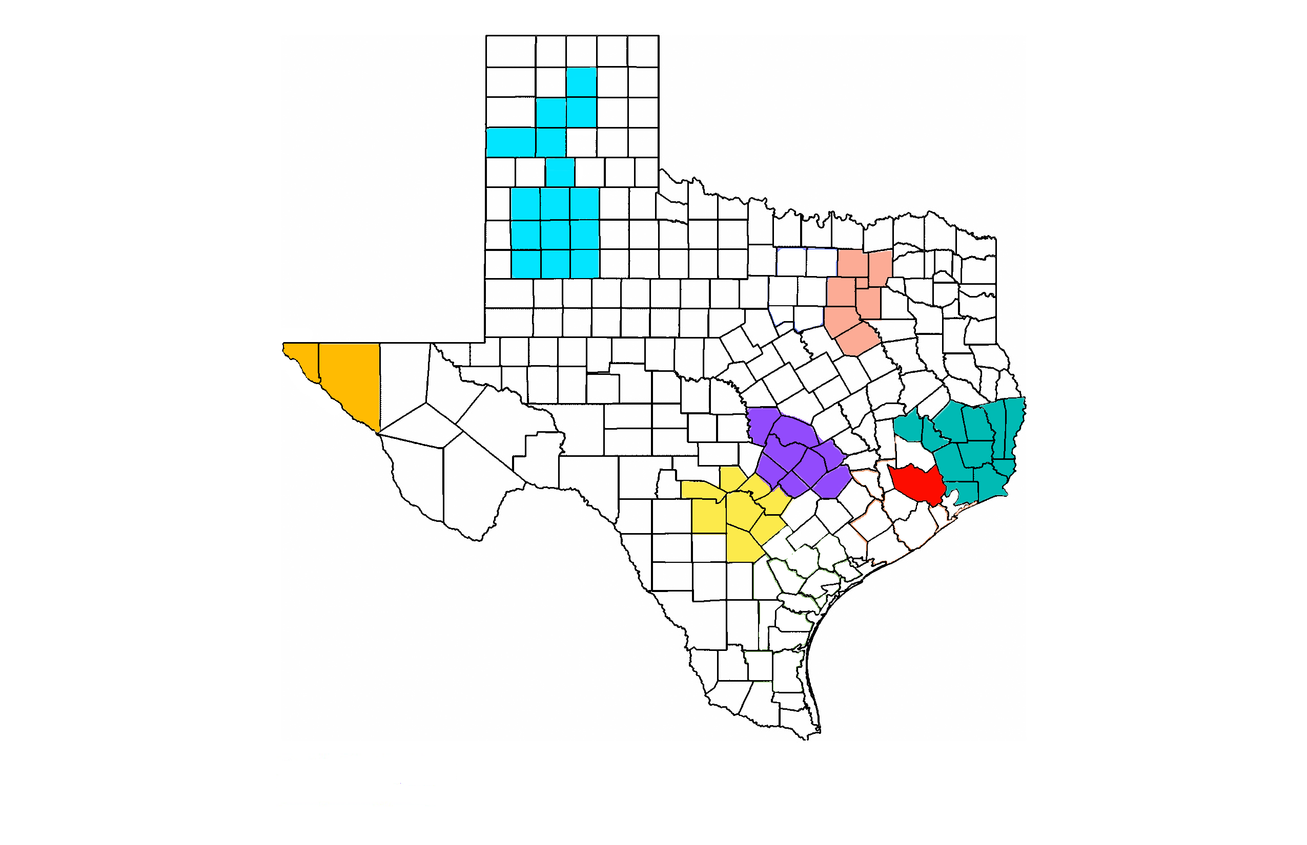 CDS service counties marked on map of Texas